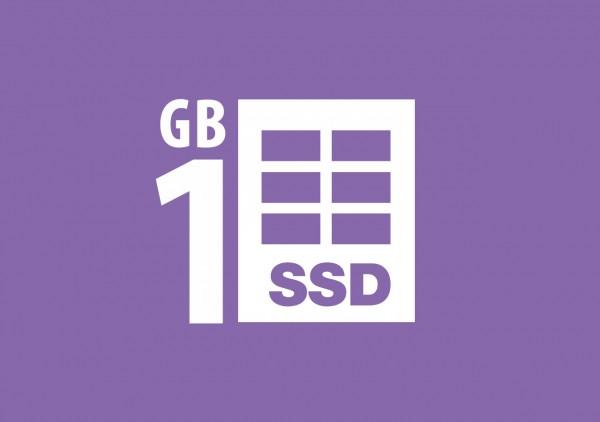 SSD Webhosting 1 GB