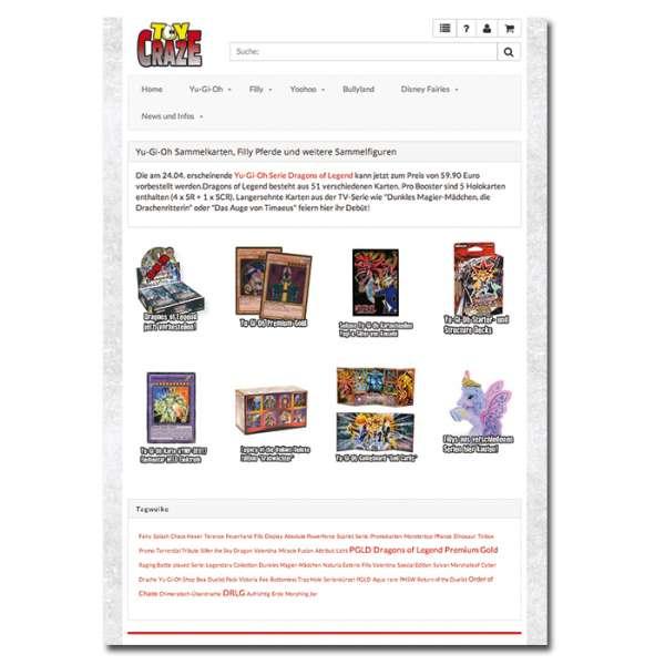 blog_toycraze_response_shopware_ipad
