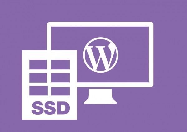 SSD WordPress Webhosting 1 GB + gratis *.de Domain